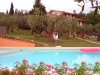 olivanda-dalla-piscina